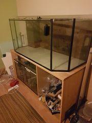 Salzwasseraquarium ca 500 l mit
