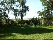 Rinderfarm in Paraguay von Privat