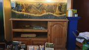Aquarium 48 120 40 H