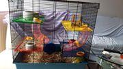 mäuse Hamster Käfig