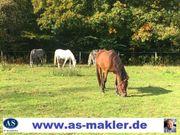 Suche dringen Reiterhöfe und Bauernhöfe