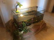 Aquarium 100x50x50 cm