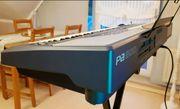 Profi-Keyboard Korg PA800 256MB