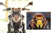 Honda - Hornet CB-900 Naked Bike