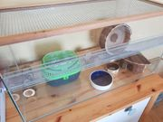 Hamsterkäfig Mäusekäfig Nagarium Heim für