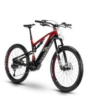R Raymon E-Bike FullRay E-Nine