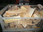 Brennholz reine Buche 75EUR oder