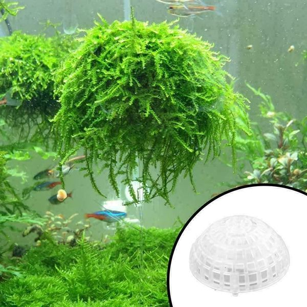 Bepflanzbare schwimmende Moosbälle