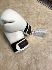 Boxhandschuhe für Erwachsene