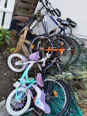 Fahrrad Fahrräder Kinderfahrrad Elsa