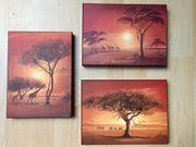 3 wunderschöne Afrika-Bilder von Leon