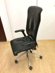 Leder - Bürosessel schwarz
