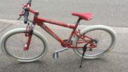 Fahrräder Toms Scheune Bikes Elgersweier