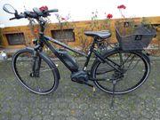 E Bike Damen Herren Trekking