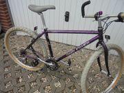 Mountenbike von Gary Fisher zu