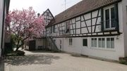 Vier Zimmer Wohnung in Herxheim