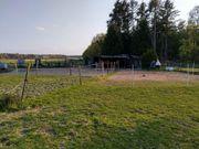 Einsteller für Offenstall in Bornheim