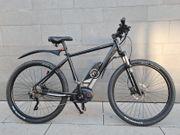 Premium Alu-E-Bike MTB Heisenberg 29