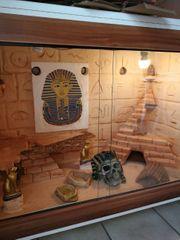 Schickes Terrarium für Wüstenbewohner
