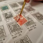 Vordruckalbum Briefmarken DDR 1949-1955 ALLE
