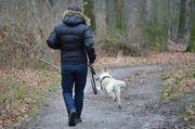Tagesbetreuung und Gassigehservice für Hunde