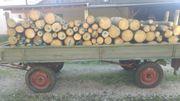 3 Ster Fichten Brennholz Feuerholz