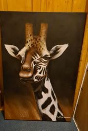 BILD Giraffe