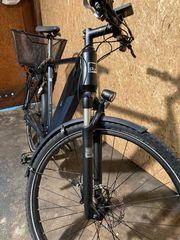 Pedelec E-Bike Manufaktur Modell 13zehn