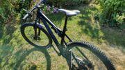 Liteville 301 MK13 Werksmaschine 27