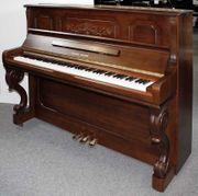 Klavier Young Chang 121 Nussbaum