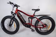 Fat Bike E-Bike MTB Elektrofahrrad