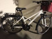 absolut neuwertiges Bergamont Damen-Trekkingrad mit