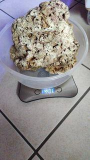 Lebendgestein 4 5kg