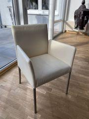 Designerstühle Leder helles creme von