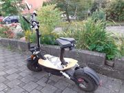 E Scooter Monster X