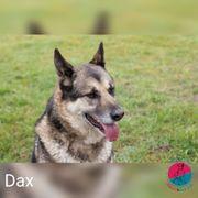 Dax - verkannte Wertentwicklung