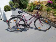 Damen-Fahrrad von Wheeler
