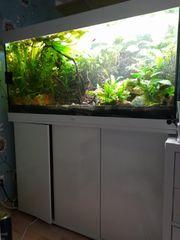 Aquarium Kombination