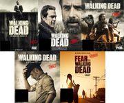 The Walking Dead Staffel 1-9