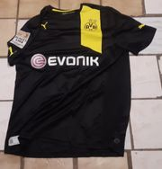 BVB Trikot 2012 13