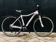 Centurion Alu-MTB Crossbike 28 27