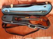 Violine Ganz