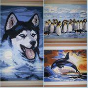 Malen nach Zahlen Husky Pinguine