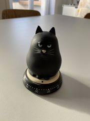 Seltene Eieruhr Katze schwarz Grumpycat