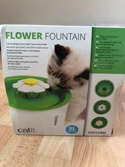 Trinkbrunnen für Katzen