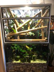 Paludarium Terrarium Aquarium Hochterrarium Rückwand