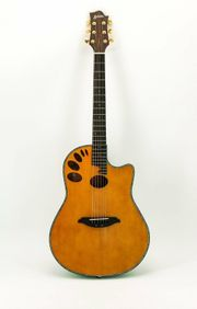 AXIOM Roundback Gitarre Akustikgitarre Fishman