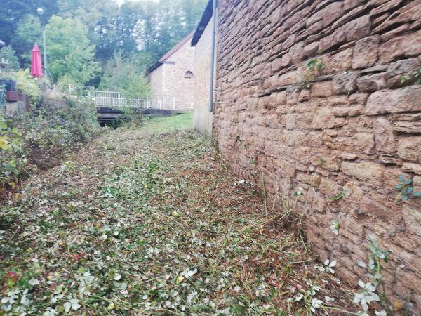 Rekultivierungsarbeiten von Grünflächen