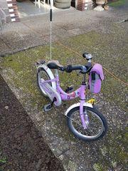 Fahrrad Puky