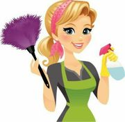 Putzfrau Haushaltshilfe Bügelhilfe